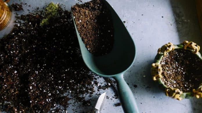 Comment choisir son matériel de jardin ?